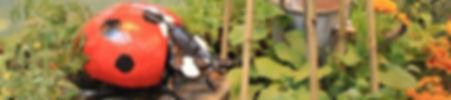 ladybird-garden-400px.jpg