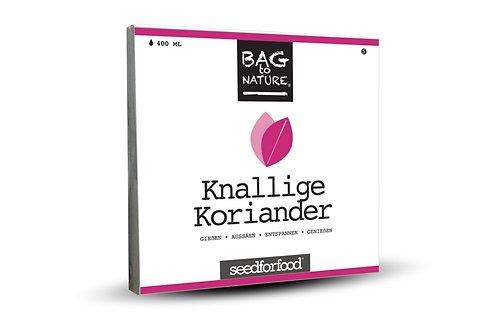 Knalliger Koriander - Bio Kräuter Bag, Vorderansicht