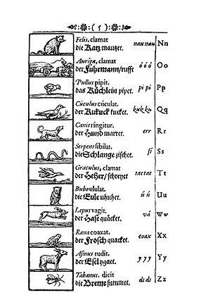 Taula dels sons inicials