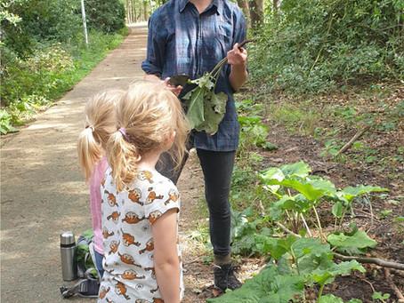 Workshop Eetbare planten