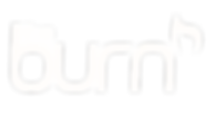 burn logo for visuals.png