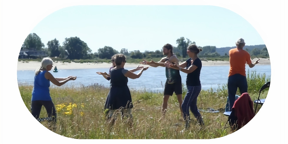 Healing Tao - Qigong and Meditation (half-year training)