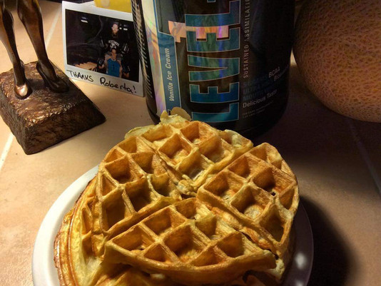 High Protein Low Calorie Waffle Recipe