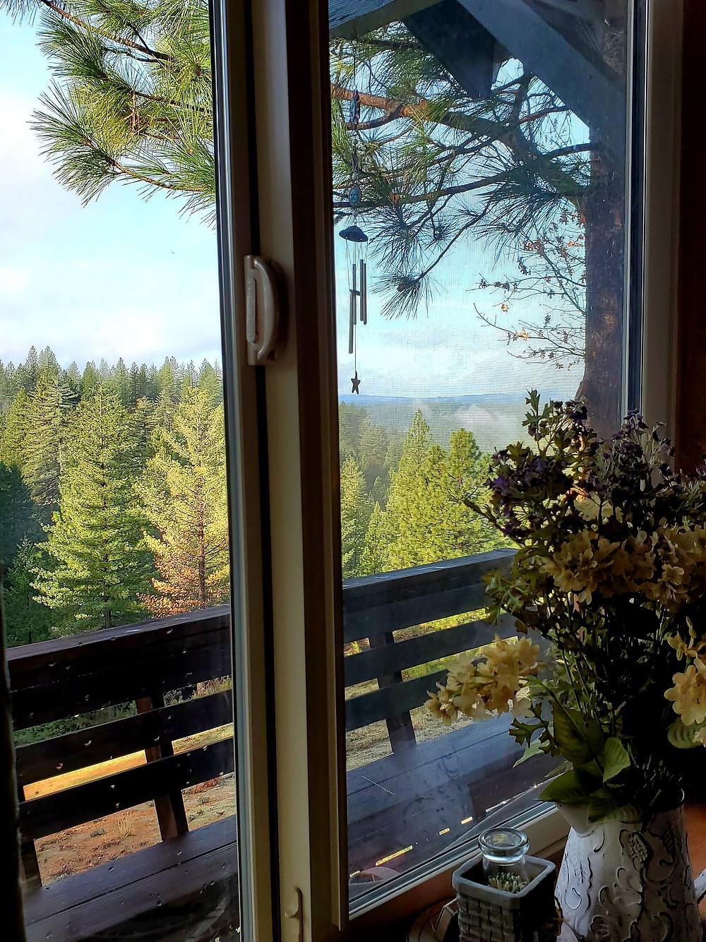 mountain view through window