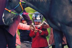 Pony Spielgruppe_2
