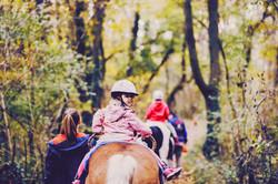 Pony Spielgruppe_19
