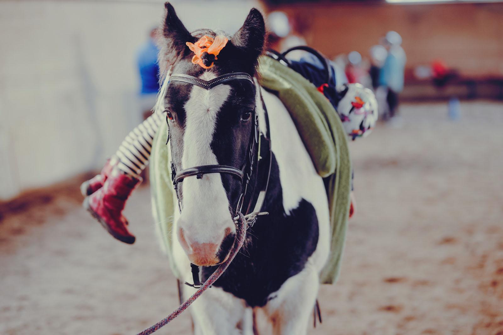 Pony Event_30