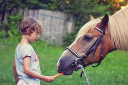 Pony Spielgruppe_13