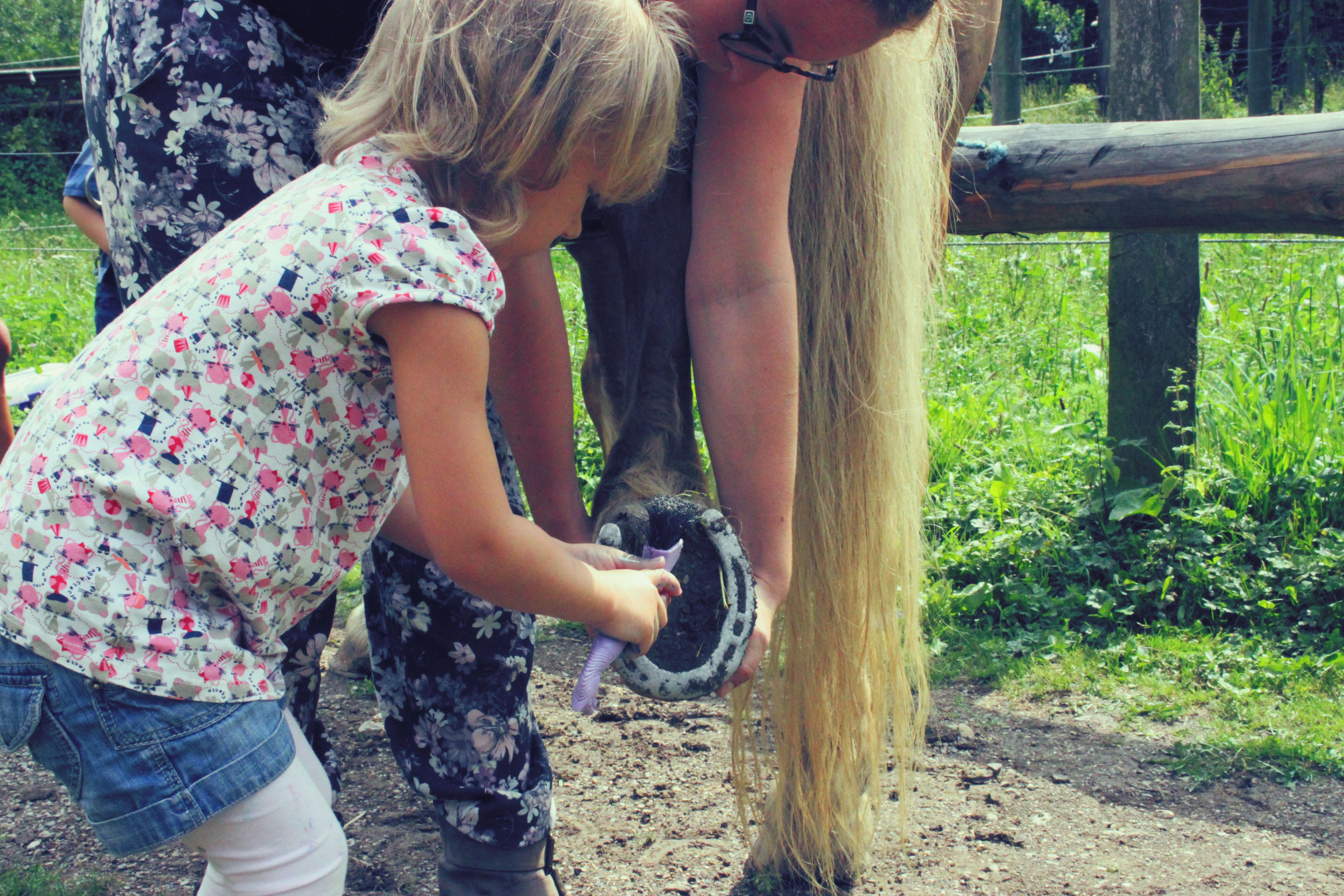 Pony Spielgruppe_16