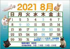 8月カレンダー②.JPEG