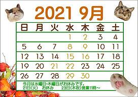 9月カレンダー.JPEG