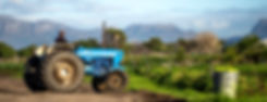 Farm-20.jpg