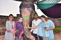 Jaipur Elephants Village