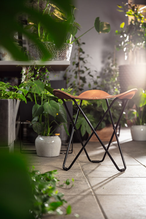 FLYING GOOSE Leather Stool