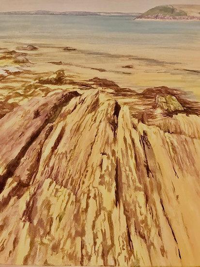 Tenby Rocks