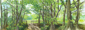 TREES WITH GATE.PNG