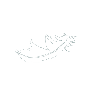 FeatherlightLiving_Feather-01_edited.png