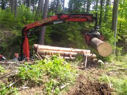 Kran im Forsteinsatz