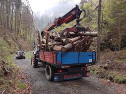 Brennholz-Transport für Herrn Eder