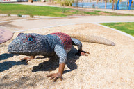 Alyce Gereaux Park Lizard