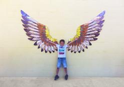 Soaring Hawk Wings