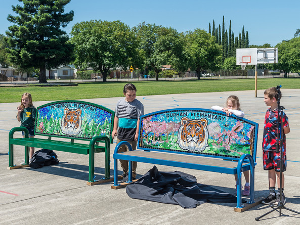 """Ponderosa and Durham """"twin tiger benches"""" unveiling"""