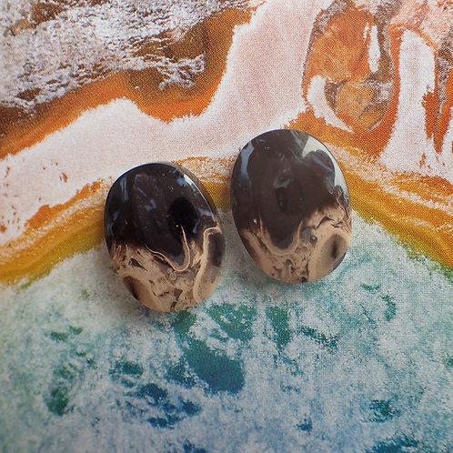 Fossil Palmwood Oval Pair