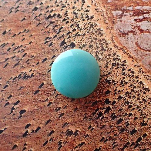 Opalised Petrified Wood Round