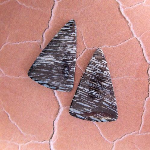 Fossil Palmwood Pair