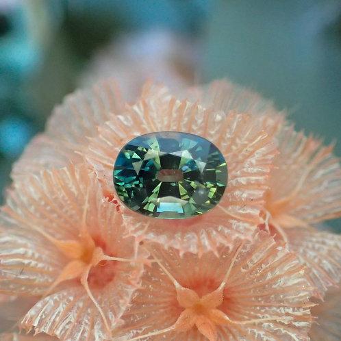 Oval Sapphire