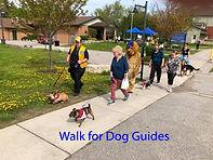 Walk for Dog Guides.jpg