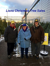 Lions Christmas Tree Sales a.jpg