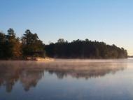 Steam fog 2