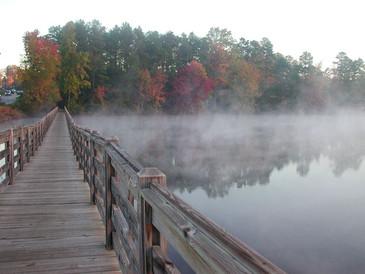 Steam Fog 1