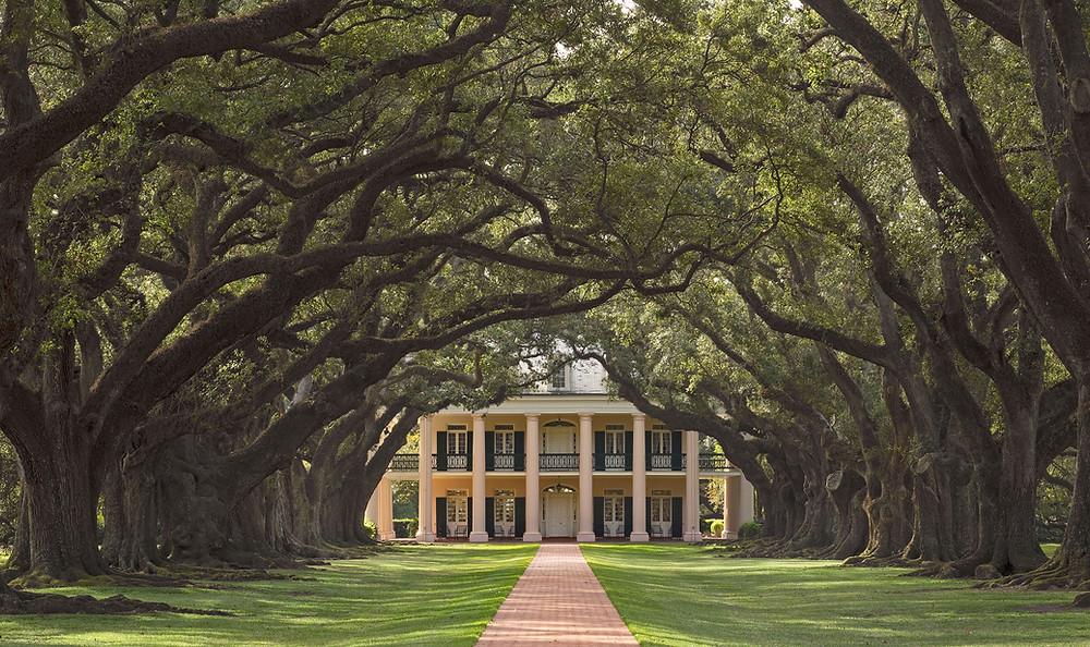 Weitere Informationen zur Oak Alley Plantation - Ofizielle Website