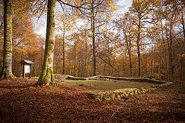 Mathieu_Pecheur_©_31_octobre_2014-_MG_6584_Anlier_promenades.jpg