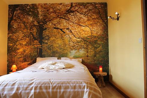 Forêt_en_automne.JPG