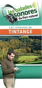 Les richesses de Tintange FR.jpg