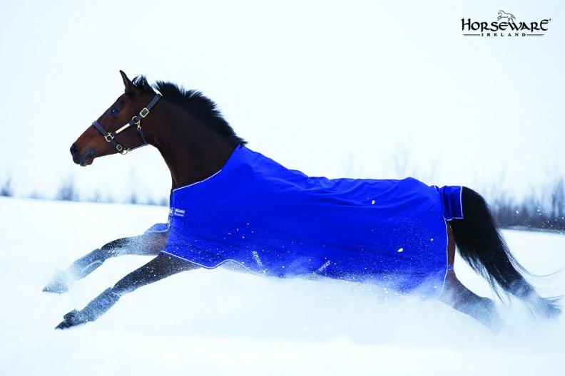 Couverture HORSEWARE Amigo Hero 6
