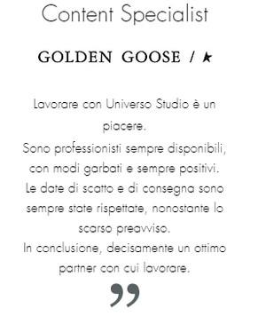 Golden goose.jpg