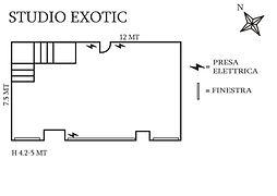 STUDIO EXOTIC.jpg