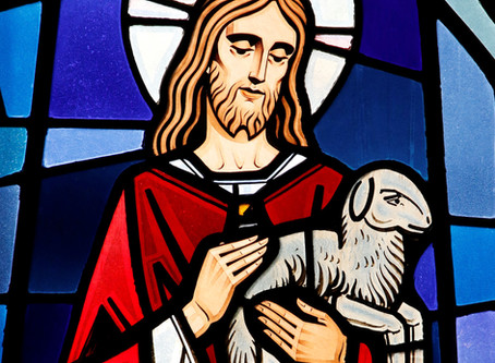 We are All Shepherds for One Another
