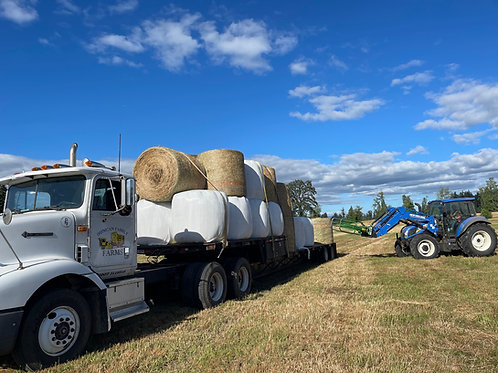 1st Cutting Local Grass Haylage