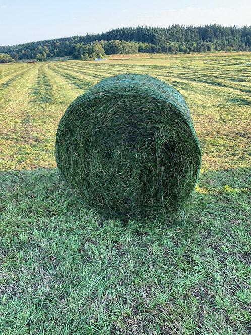 2nd Cutting Local Grass - Round