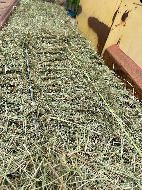2nd Cutting Local Grass - Priced per bale