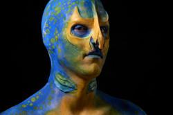 An Underwater Sea Creature