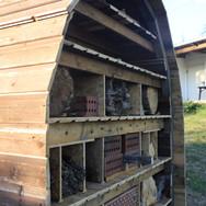 insektenhotel_14013.JPG