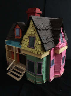 The 'Up' House