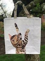 cat bag.jfif