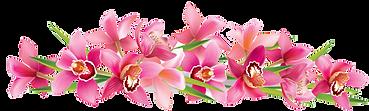 pink_orchids_design_vector_574901 copy.p